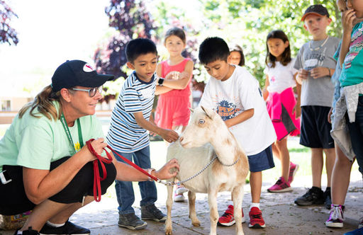Summer@Oakwood Campers Interact with & Learn About a Variety of Animals